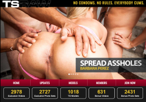 Fine paid porn site for shemale porn videos.