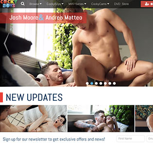 Nice pay site if you want top notch gay flicks